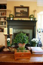 attractive image of living room decoration using black wood shelf
