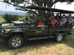 african safari car top 4 amazing safaris in south africa