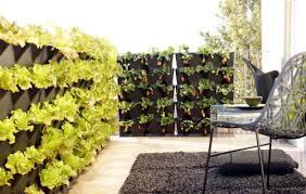 garten balkon balkon sichtschutz mit vertikalem garten günstig effektiv