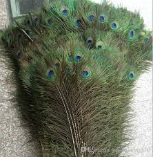 peacock feather fan feather peacock tails 10 12 feathers fan for wedding party