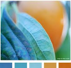 684 color inspirations future projects images