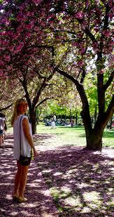 brooklyn botanic gardens u0026 bbq fossypants