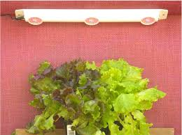 under cabinet grow light under counter led grow lights led grow lights led grow and grow