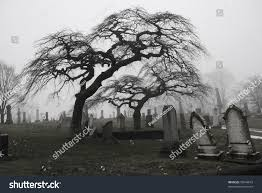 graveyard clipart black and white spooky graveyard scene complete scary trees stock photo 76644619