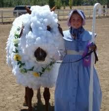 Lamb Halloween Costume Halloween Costumes Horse Eventing Nation