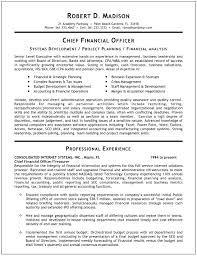 cfo resume samples free resumes tips