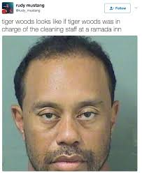 Hot Convict Meme - tiger woods got a dui and the internet is already making mugshot