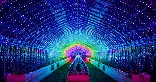 Light Show Plant Party A Greenhouse In Tokyo Bursts Into A Dazzling Light