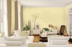 painting decoration interior wall paint ideas hommeg