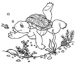 franklin turtle dive sea coloring pages batch coloring