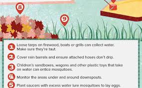 how to ideas backyard get rid of mosquitoes in yard spectacular on home