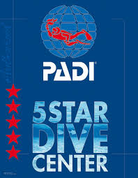 blue view divers digital manuals we have ebooks for all padi