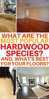 what is the best vacuum for hardwood floors can you use a vacuum