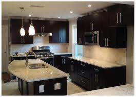 black cabinets with black appliances cabinets best matched with dark appliances premium cabinets