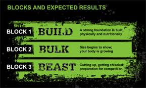 Beast Meal Plan Spreadsheet Beast Workout Schedule Free And Tips