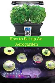24 best aerogarden tips images on pinterest indoor herbs