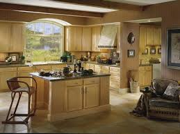 Cardell Kitchen Cabinets Mesmerizing Cardell Cabinets For Kitchen Concepts Kitchen Cabinets