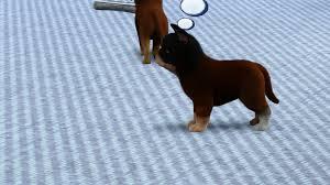 sims 3 boxer dog new dog mixing genetics large dogs breeding 3 up u2014 the sims