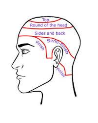 mens haircuts step by step 68 best diagram haircut images on pinterest hair cut hair cuts