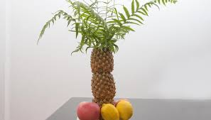 Decorations Synonym How To Make A Palm Tree Decoration By Using Pineapples Synonym
