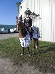 Halloween Costumes Horse Horse Show Costume Class Pictures Young Rider Forum