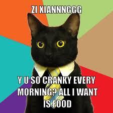 Yu So Meme Generator - resized business cat meme generator zi xiannnggg y u so cranky