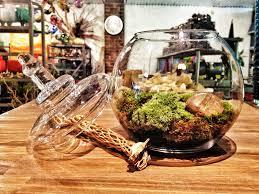 rochester new york florist natural gift ideas moss terrarium
