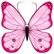 butterflies butterfly clipart background clipartfest clipartix
