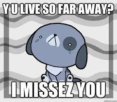 Why You So Meme - y u live so far away i missez you miss you quickmeme
