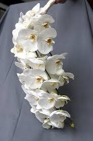 Cascading Bouquet Wedding Florals Cascading Bouquets