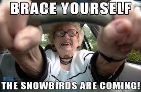 let s make new snowbird memes for 2016 cactus hugs