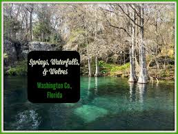 Florida waterfalls images Springs waterfalls wolves in washington county florida jpg
