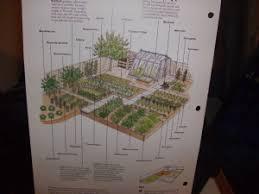 crop rotation and companion planting