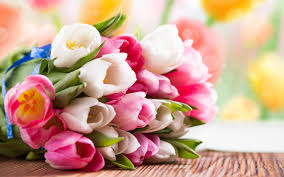 Tulip Bouquets Tulips Bouquet Wallpaper
