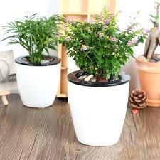 Diy Self Watering Herb Garden Self Water Planters U2013 Affordinsurrates Com
