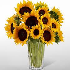 bouquet of sunflowers golden sunflowers bouquet royal fleur florist larkspur ca 94939