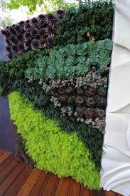 vertical garden i love the bright green i think i could do a