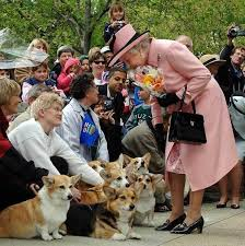 The Queens Corgis The Queen Says Goodbye To Her Beloved Pet Corgi Holly