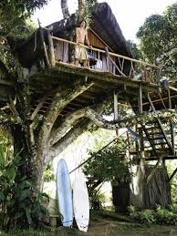 this art jungle eco lodge in brasil is close to paradise nature