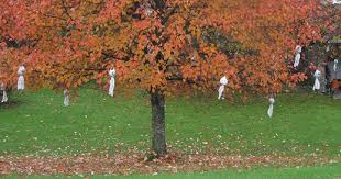 Outdoor Halloween Decorations Ghosts by Ghostly Outdoor Halloween Decoration Ideas For Trees U2013 Celebrating