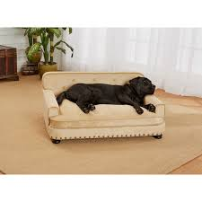 Plush Sofa Bed Enchanted Home Pet Caramel Ultra Plush Library Pet Sofa Bed Free