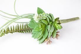 Succulent Boutonniere Fake Succulents Artificial Succulent Boutonniere Mini Bouquet