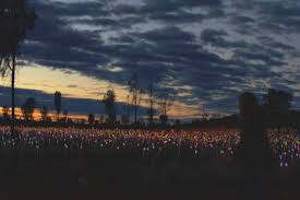field of light uluru watch uluru s field of light come alive australia outback yarns