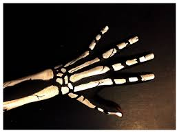 Images Of Halloween Skeletons by Skeleton Hand Body Paint Youtube