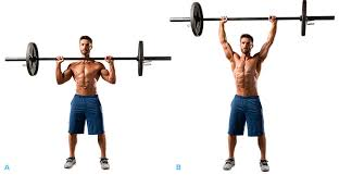 Correct Technique For Bench Press Correct Technique For The Standing Barbell Press Fit Tip Daily