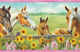Wallpaper Borders For Girls Bedroom First Wallpaper Border Horse Wallpaper Border