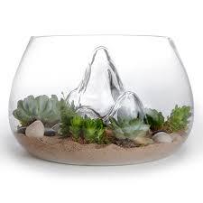 plants for office best indoor plants for office aviblock com
