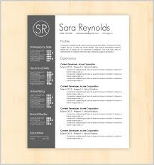 interesting resume templates resume template in design new striking design amazing resume