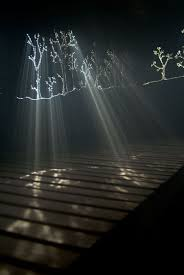 let there be light theater locations 115 best let there be natural light images on pinterest natural