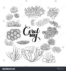 collection ocean plants coral reef elements stock vector 358074005